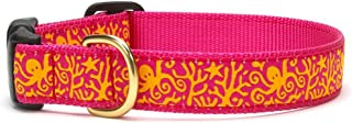product image for Up Country Under the Sea Dog Collar