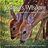 img - for Joshua's Wisdom book / textbook / text book