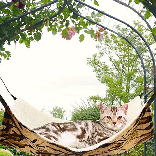 Relax Cat - 9