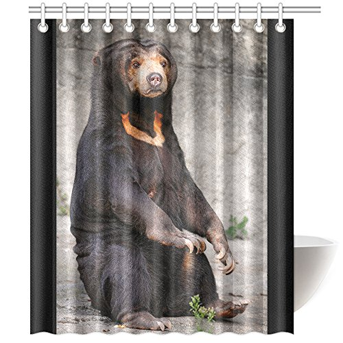 CTIGERS Animal Theme Shower Curtain for Kids Cute Black Bear Sitting on the Ground Polyester Fabric Bathroom Decoration 60 x 72 Inch by CTIGERS