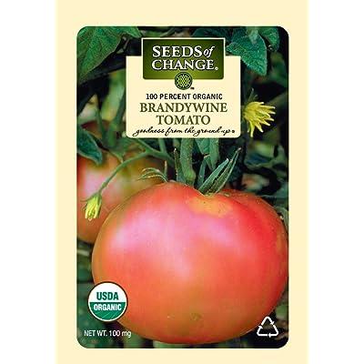 Seeds of Change S10766 Certified Organic Brandywine Heirloom Tomato : Vegetable Plants : Garden & Outdoor