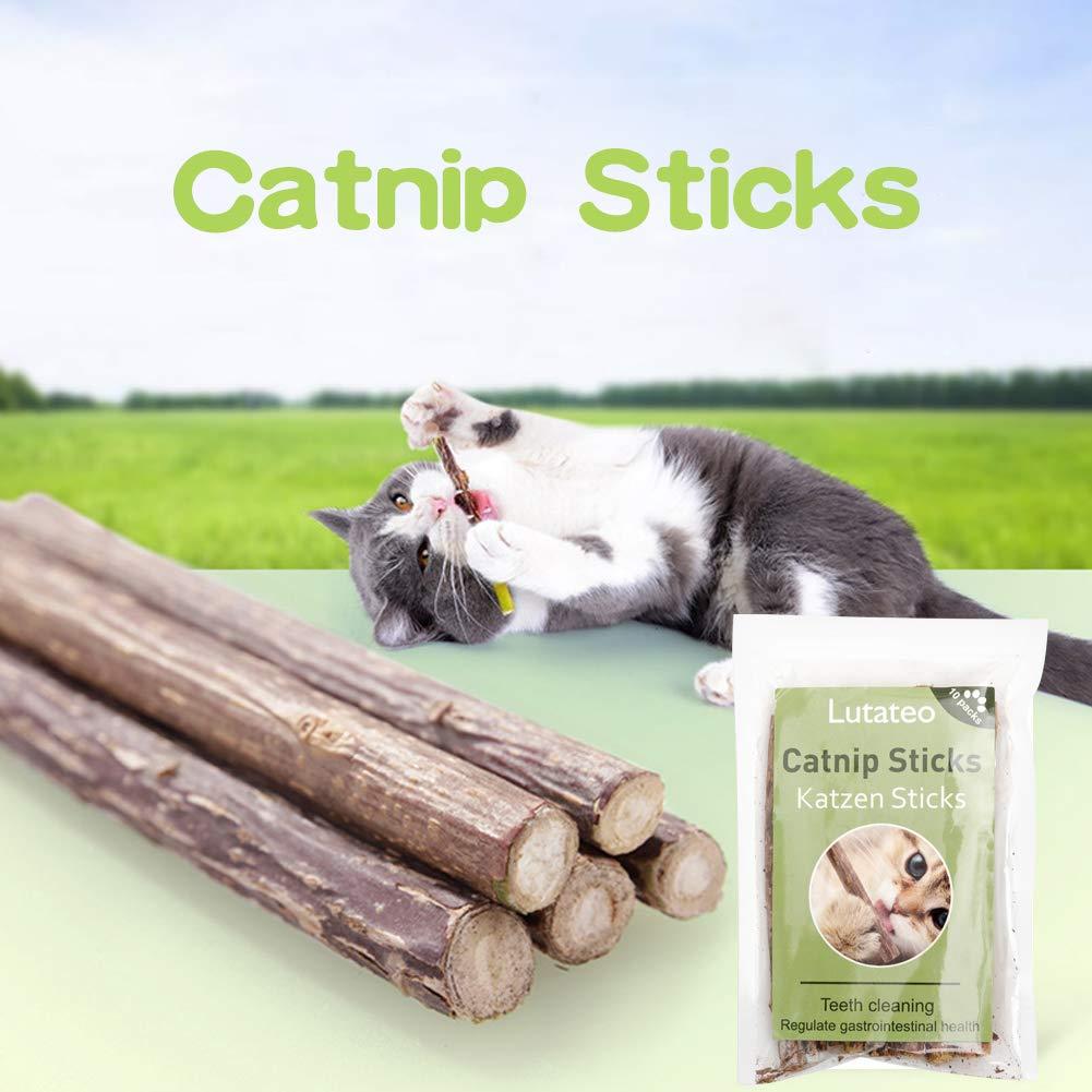 Cat Sticks, Juguete para Gatos Catnip, 10 Palitos De Hierba Gatera De Matatabi para Gatos Natural Cuidado Dental Chew Catnip Sticks para Gatitos ...