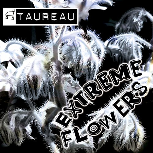 Extreme Flower (Extreme Flowers (K.K. Mix))