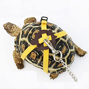 ebamaz Leather Harness Strap for Tortoise/Turtle Pet Walking Lead Control  Rope Chest Collar