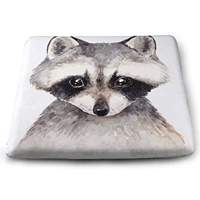 Sanghing Customized Cute Raccoon Forest Animal Portrait 1.18 X 15 X 13.7 in Cushion, Suitable for Home Office Dining Chair Cushion, Indoor and Outdoor Cushion.: Home & Kitchen