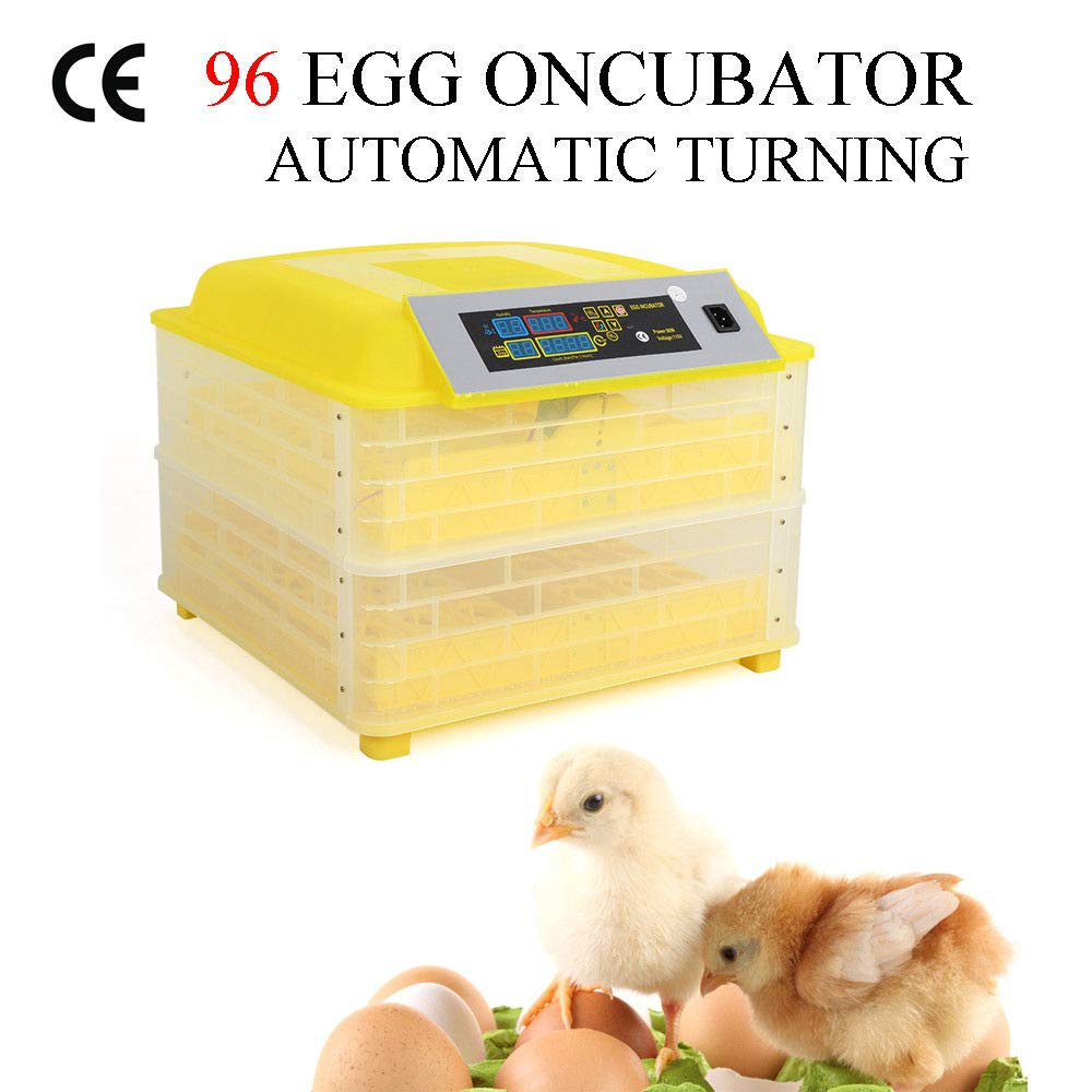 96 Egg Incubator Digital Chicken Duck Parrot Egg Hatcher Automatic Turning W//LED Temperature Display Panel CE Certified 96- Egg Incubator