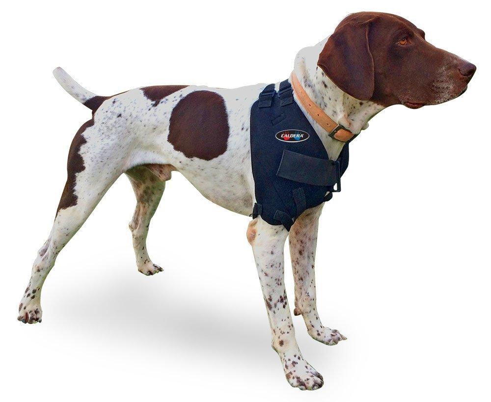 CALDERA Pet Therapy Wrap - Shoulder - Large by Caldera