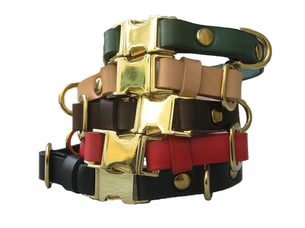 Dog Collar Quick Release Dog Collar in Green Leather and Brass Hardware for Small and Medium Dogs Colorful Dog collar