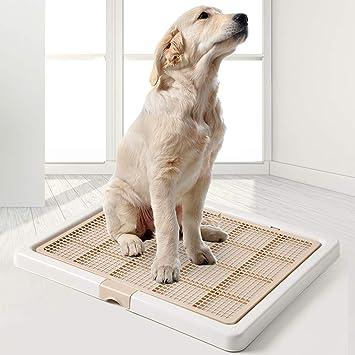 犬 トイレ 大型 【2021年版】犬用トイレトレーおすすめ18選|ワイドサイズや固定できる商品も紹介