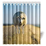 CTIGERS Animal Theme Shower Curtain for Kids Cute Sheep Polyester Fabric Bathroom Decoration 66 x 72 Inch