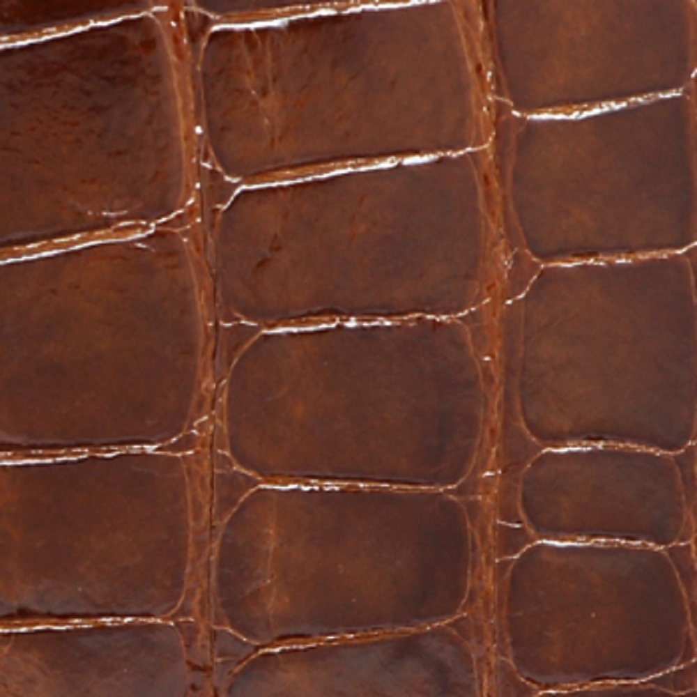 Cognac Glazed Genuine Alligator Skin Wallet for Men – American Factory Direct – Gift box – Gifts for Men – Made in USA by Real Leather Creations FBA734 TT by Real Leather Creations (Image #2)