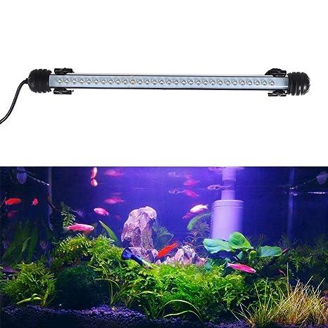 JOYTUTUS iluminación Acuario, LED Lámpara Acuario Luces del Acuario, Sumergible Submarino Agua Luces a