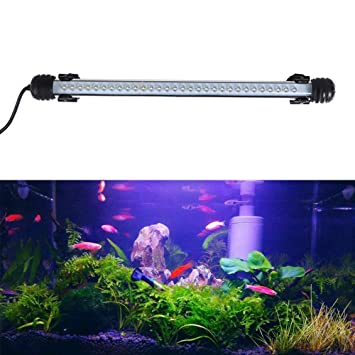 Led Lampe L Éclairage Aquarium De Joytutus PXlZiwTuOk