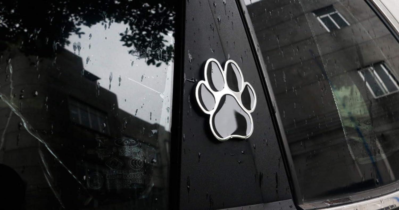 Animal Bear Dog Foot Print Paw 3D Metal Car Sticker Decal