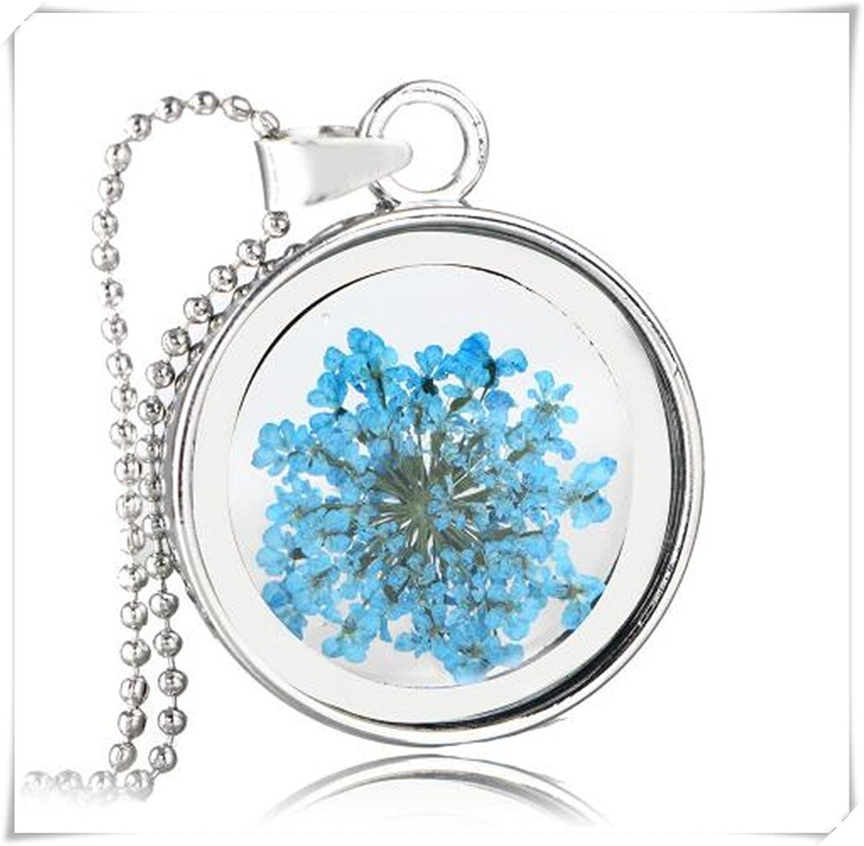 Redonda transparente cristal Multi–Color flores secas collar con colgante