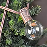 G40 Patio Party Globe String Lights 25 Bulbs Garden Holiday Warm White Indoor or Outdoor Decoration 120V GMY Lighting (Brown Wire)