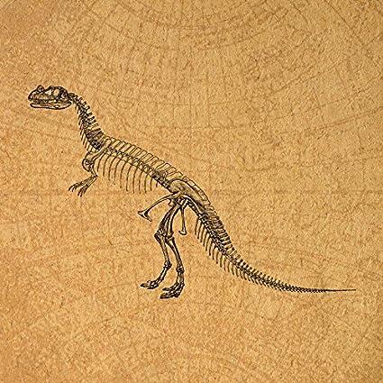 Amazon.com: Vintage Prehistoric Dinosaur Skeleton Wall Art Print for ...