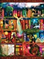 Treasure Hunt Bookshelf 1000 pc Jigsaw Puzzle from SunsOut