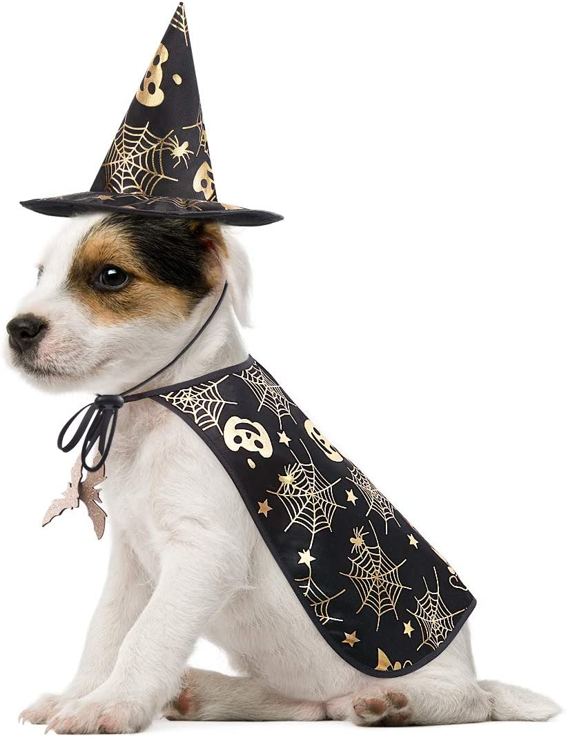 POPETPOP Mascotas Disfraces de Halloween Cabo con Wizard Hat Perro Gato Aparatos de Halloween (Tamaño S)
