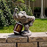 Iowa Hawkeyes NCAA ''Herky'' College Mascot 20? Vintage Statue