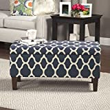 HomePop Large Decorative Storage Ottoman (Blue) Review
