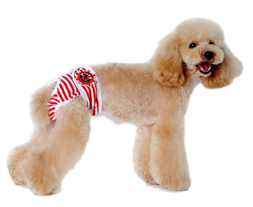 bragas de higiene de algod/ón para perra E-Kauf Paquete de 3 pantalones protectores lavables