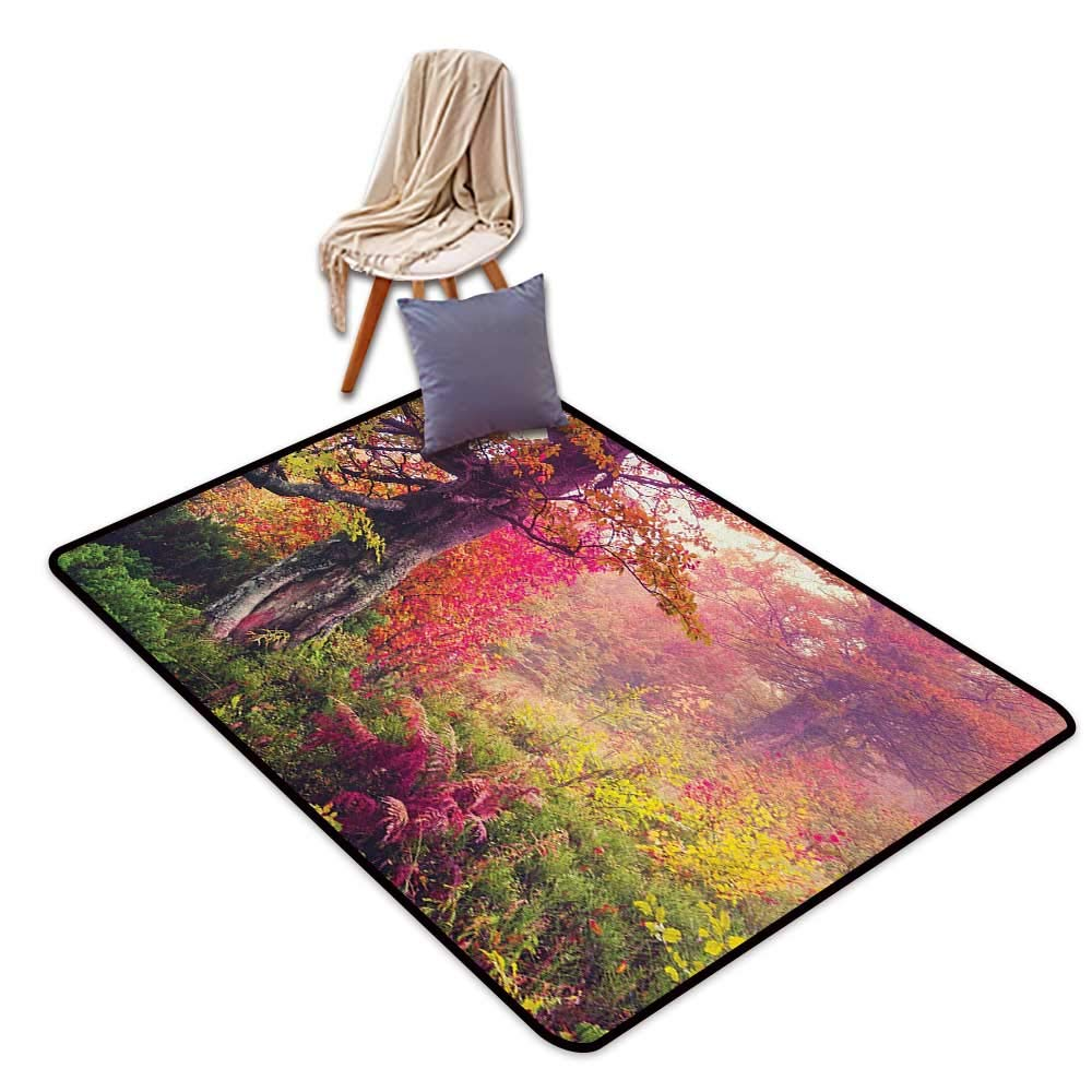 Custom Door Rugs for Home Rugs Forest Fairy Majestic Landscape with Autumn Trees in Forest Natural Garden in Ukraine Door Rug for Internal Anti-Slip Rug W5