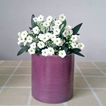 Moderne Better Way Mit Orchideen Ubertopf Aus Keramik Mit Design