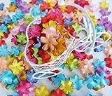 ICRAFY 150 Die cut Petal Flower Mulberry paper White , Pastel Tone , Rainbow Tone 150 Pcs. Size 20 mm. (Rainbow)
