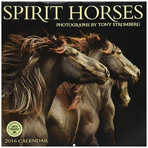 UPC 762109004357, Spirit Horses - 2016 Calendar 12 x 12in
