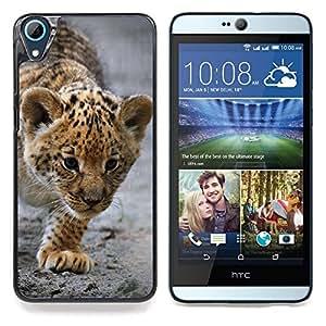 "Qstar Arte & diseño plástico duro Fundas Cover Cubre Hard Case Cover para HTC Desire 826 (Bebé Leopardo Cub Madre Cute Puppy"")"