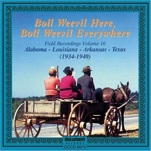 Boll Weevil Here  Boll Weevil Everywhere  Field Recordings for sale  Delivered anywhere in USA