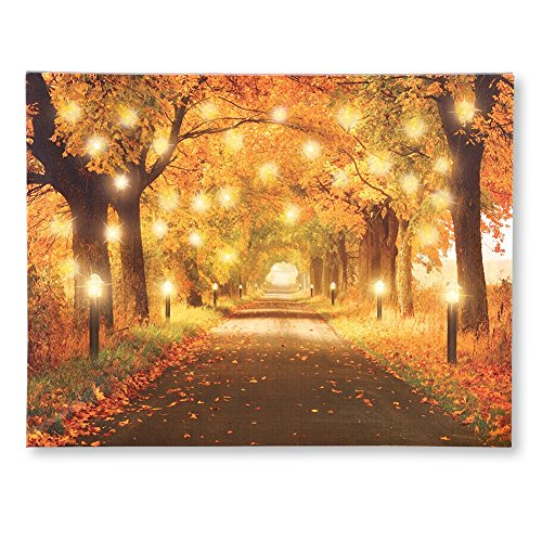 Lighted Autumn Forest Pathway Canvas
