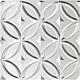 """Fasade - 4ft x 8ft Rings Brushed Aluminum Decorative Wall Panel - Fast and Easy Installation (12"""" X 12"""" Sample)"""