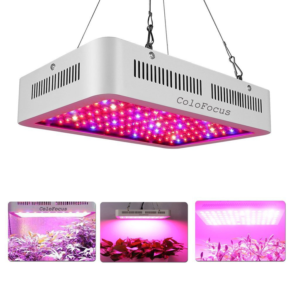 ColoFocus 1000W Double Chips Indoor LED Plant Grow Light Kit, Full Specturm for Greenhouse and Indoor Plant Flowering Growing Plants (10W Leds 100Pcs)