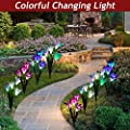 XJEXPO Solar Flower Light