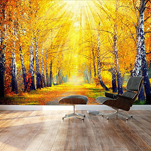 Sunny Autumn day trees line a path Landscape Wall Mural