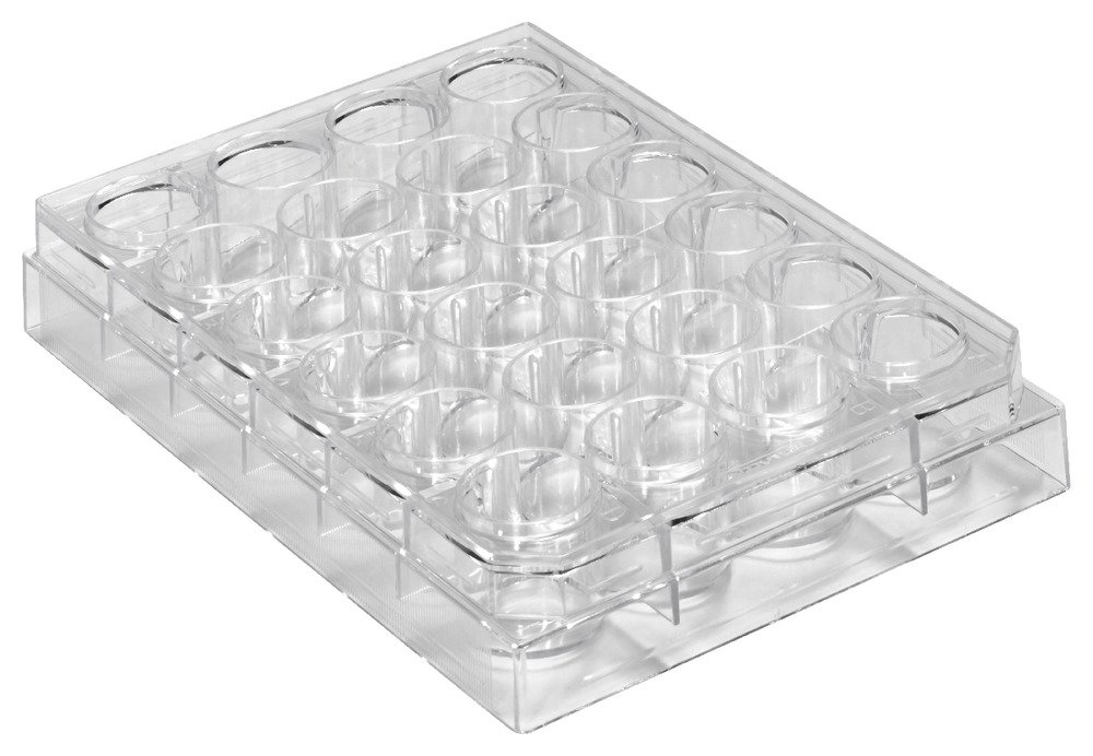 Caplugs Evergreen 290-8124-01F 24-Well Plates. Polystyrene, Natural, Box pack by Caplugs