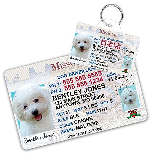 Missouri Driver License Custom Dog Tag for Pets and Wallet Card - Personalized Pet ID Tags - Dog Tags For Dogs - Dog ID Tag - Personalized Dog ID Tags - Cat ID Tags - Pet ID Tags For Cats
