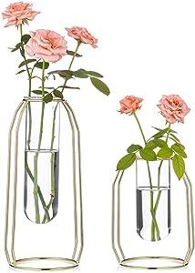 Nuptio 2 Pcs Flower Vases with Iron Art Frame, Geometric Plant Pot, Centerpiece Plant Vase, Plants Tabletop Display Holder for Wedding Table Office Living Room Decor (Gold, S+L)
