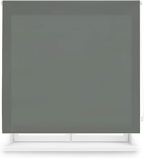 Blindecor Ara - Estor enrollable translúcido liso, Gris Pastel, 120 x 175 Cm (ancho x alto): Amazon.es: Hogar
