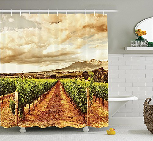 [Farm House Decor Shower Curtain Set Grape Valley Clouds over Vineyard Natural Fruit Plantation in Autumn Garden Theme Bathroom Accessories Green] (Grape Vine Halloween Costume)