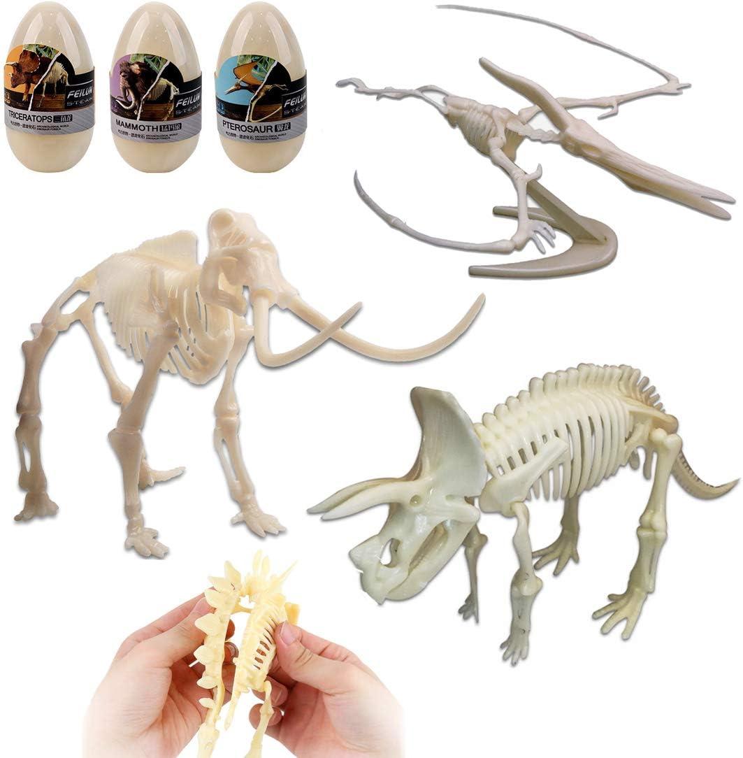 una Dinosaurio Esqueleto Huesos deAO Educativo para Montar Niños Regalo juego de 3