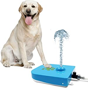 Royal Tails Dog Water Fountain - Step On Paw Activated Dispenser & Sprinkler for Fresh Drinking Water - Adjustable Pressure Flow - 1m Hose Included