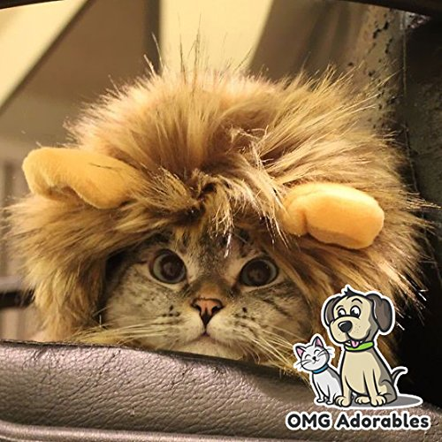 Cat Lion Mane - Wig with Ears - Dress up Costume for...