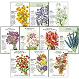 """Botanical Interests """"Cut Flowers"""" Seed Collection II, for Fresh and Dried Flower Arrangements - 10 Packets with Gift Box"""