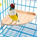 Wooden Bird Perch Toy Playground Stand for Pet Small Parrot Parakeet Conure Hamster Gerbil Rat Mouse Bird Cage Accessories Stands Exercise Toys Sector Shape by Mrli Pet