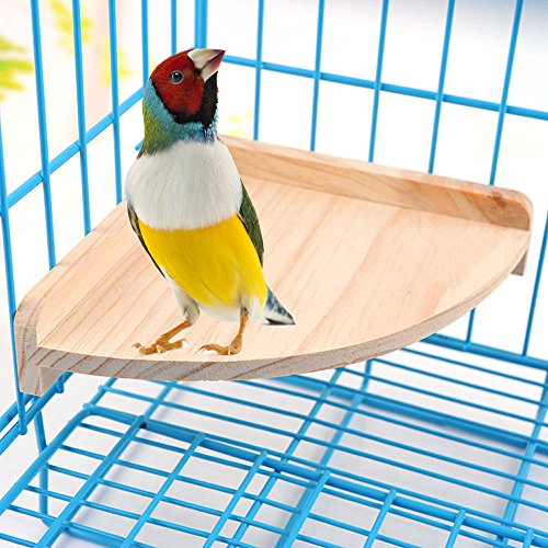 Mrli Pet Bird Perch Platform Stand Wood for Small Animals Parrot Parakeet Conure Cockatiel Budgie Gerbil Rat Mouse Chinchilla Hamster Cage Accessories Exercise Toys Sector ()