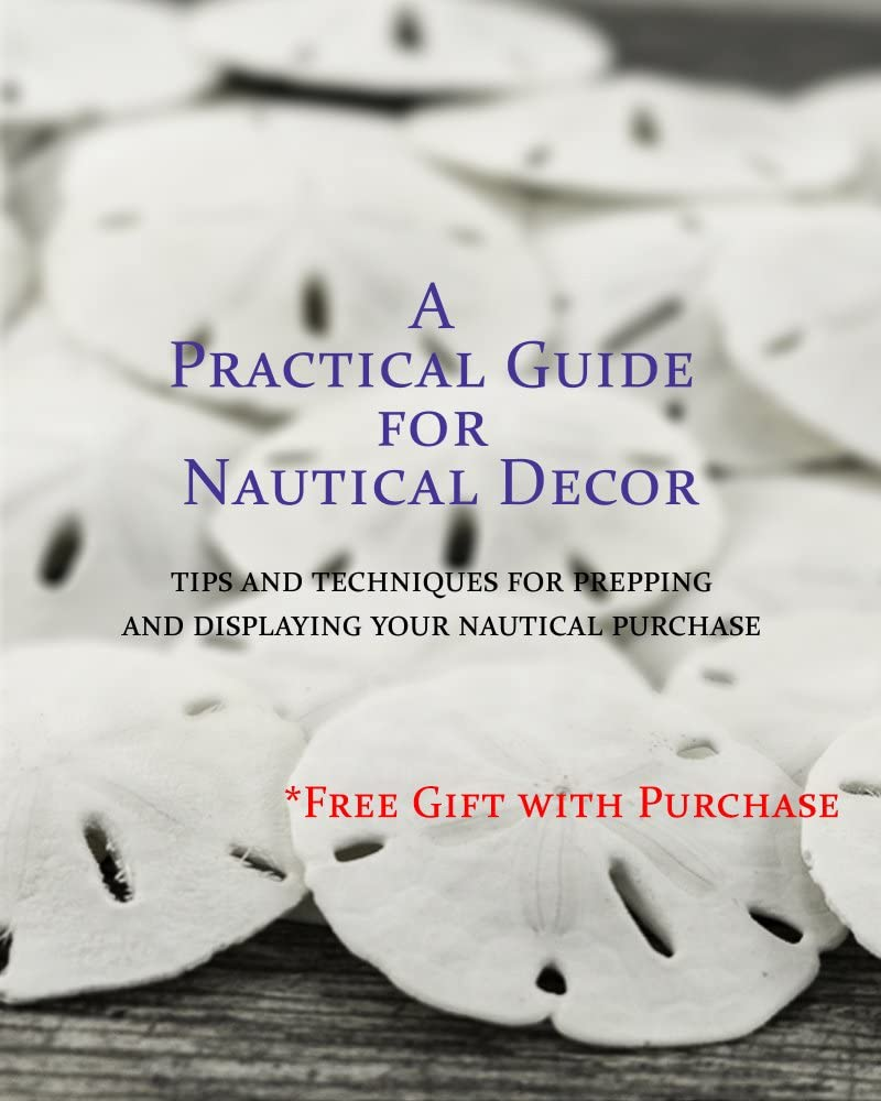 Natural Barnacle Cluster for Craft and Decor Plus Free Nautical Ebook by Joseph Rains 3-5 Aquarium Ornament Piece for Decoration Real Purple Barnacle Cluster