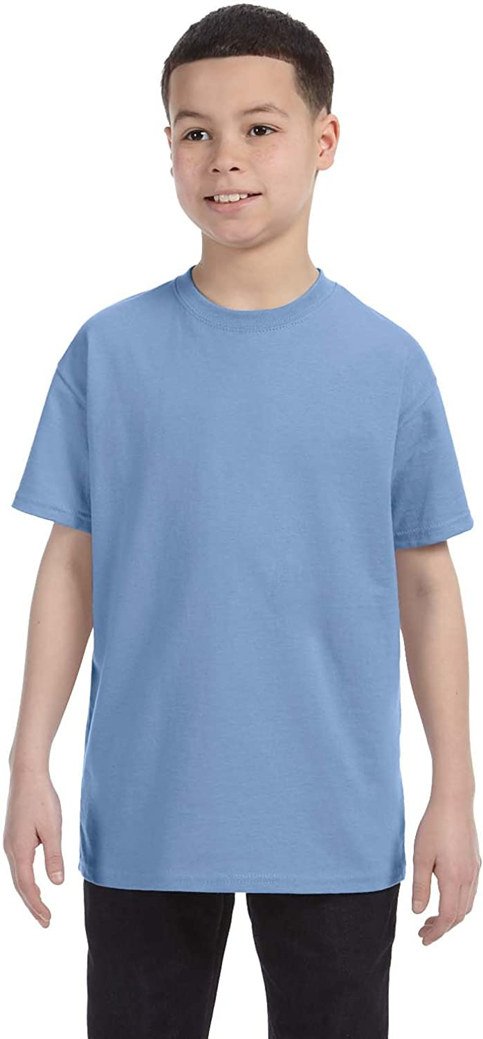 Large Light Blue Jerzees Big Boys Rib Collar Tear Away Label T-Shirt